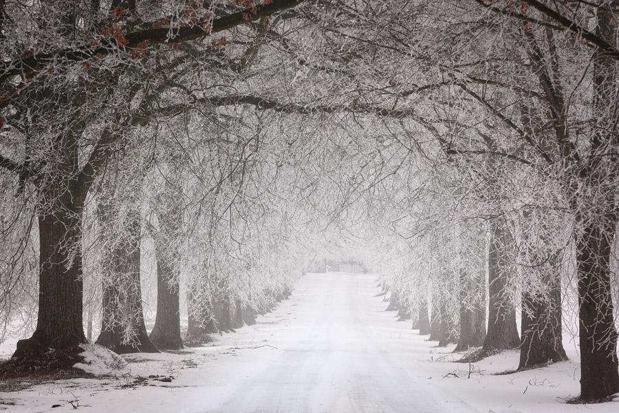 陸上短距離走で最も記録が出やすい季節は春?夏?秋?