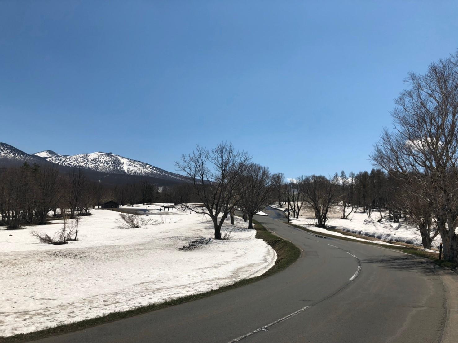 青森県 雪道