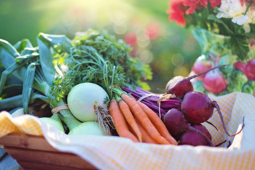 花粉症の予防・改善に効果のある食べ物や飲み物とは?