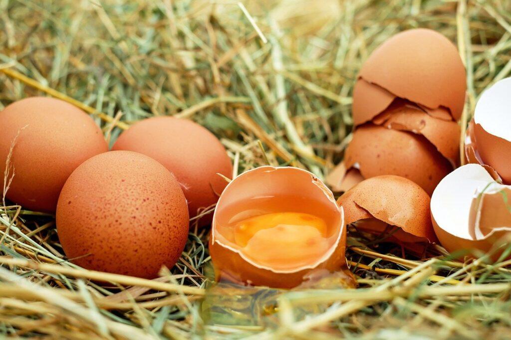 卵の殻を食べてしまっても大丈夫?