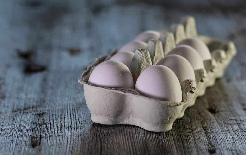 卵の殻に付いている菌とは?