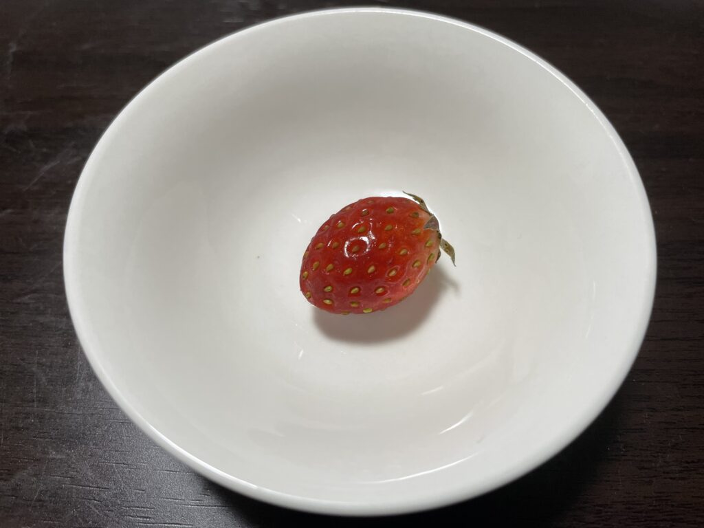 1粒1000円の高級いちごとスーパーのいちごを食べ比べてみた